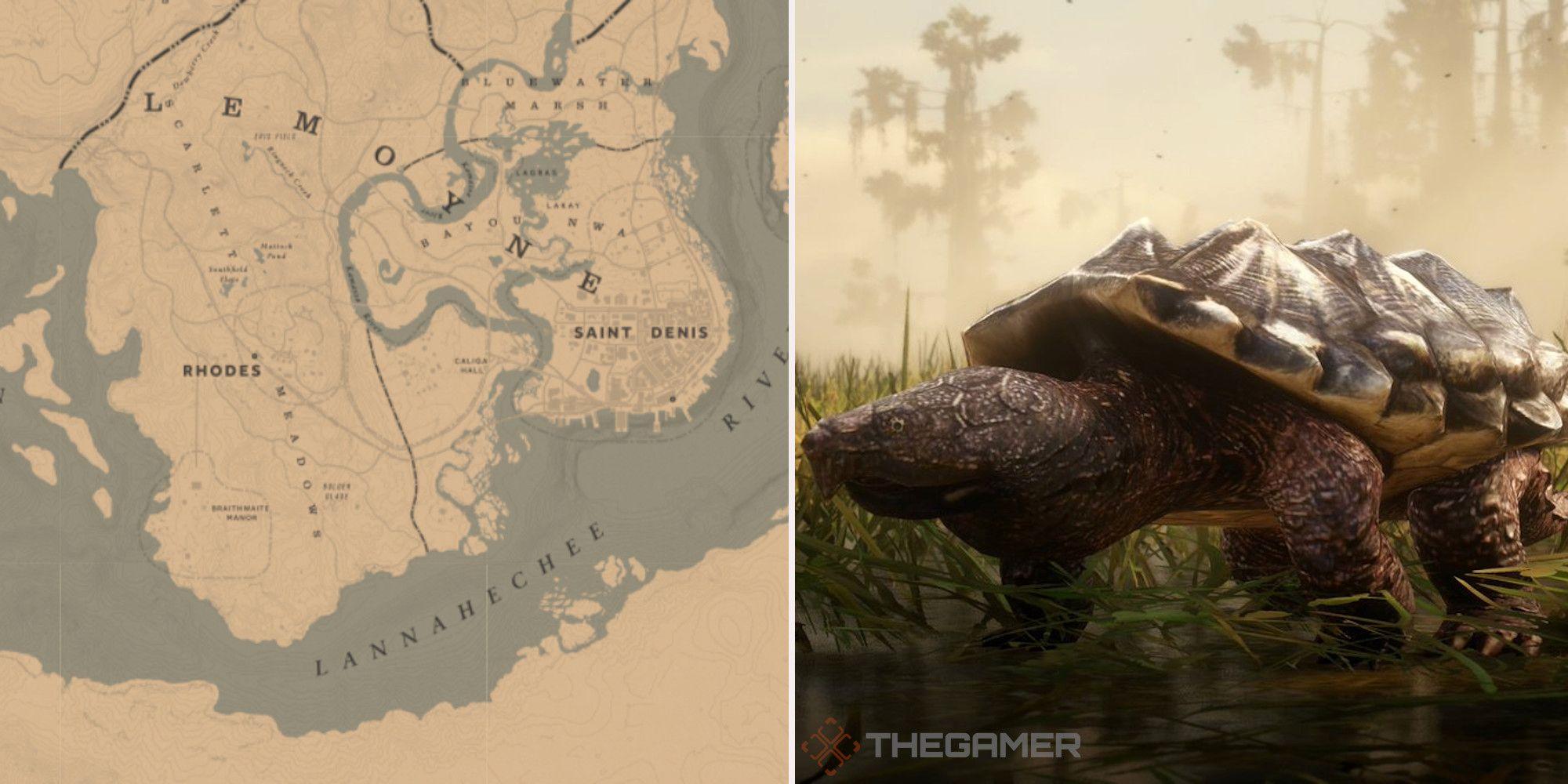 Red Dead Online: las mejores ubicaciones para la caza de tortugas
