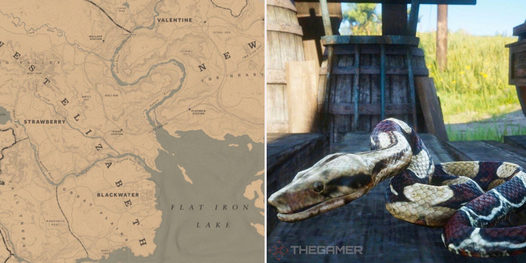 Red Dead Online: las mejores ubicaciones para la caza de serpientes