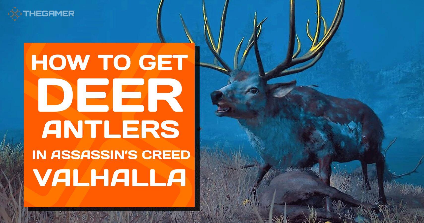 Assassin's Creed Valhalla: Cómo conseguir astas de ciervo