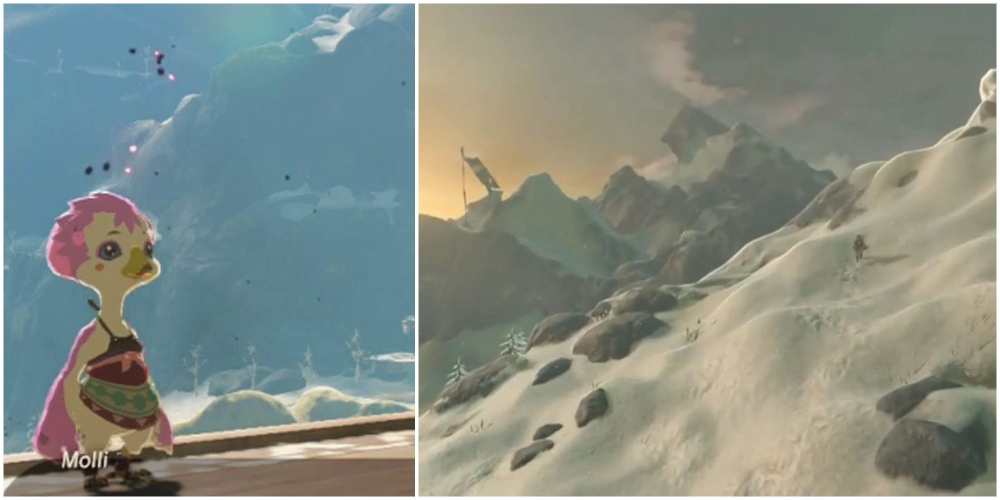 Breath Of The Wild: The Bird in the Mountains Tutorial