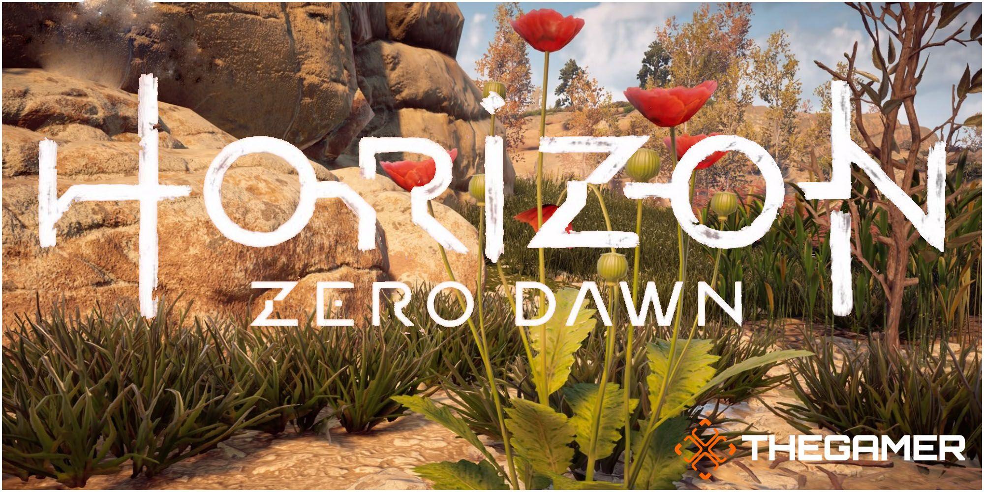 Horizon Zero Dawn: una guía de pociones