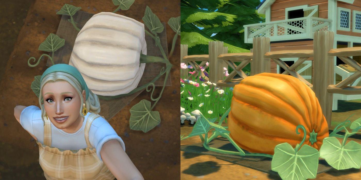 Los Sims 4 Cottage Living: Guía para cultivar cultivos de gran tamaño