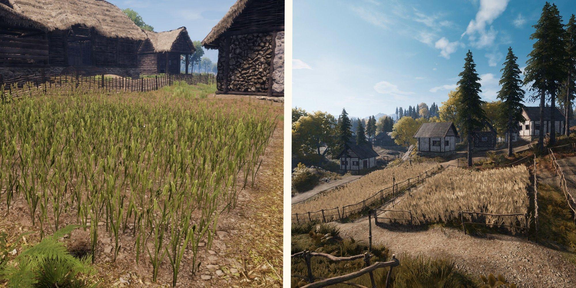 Dinastía medieval: cómo hacer y usar tierras de cultivo