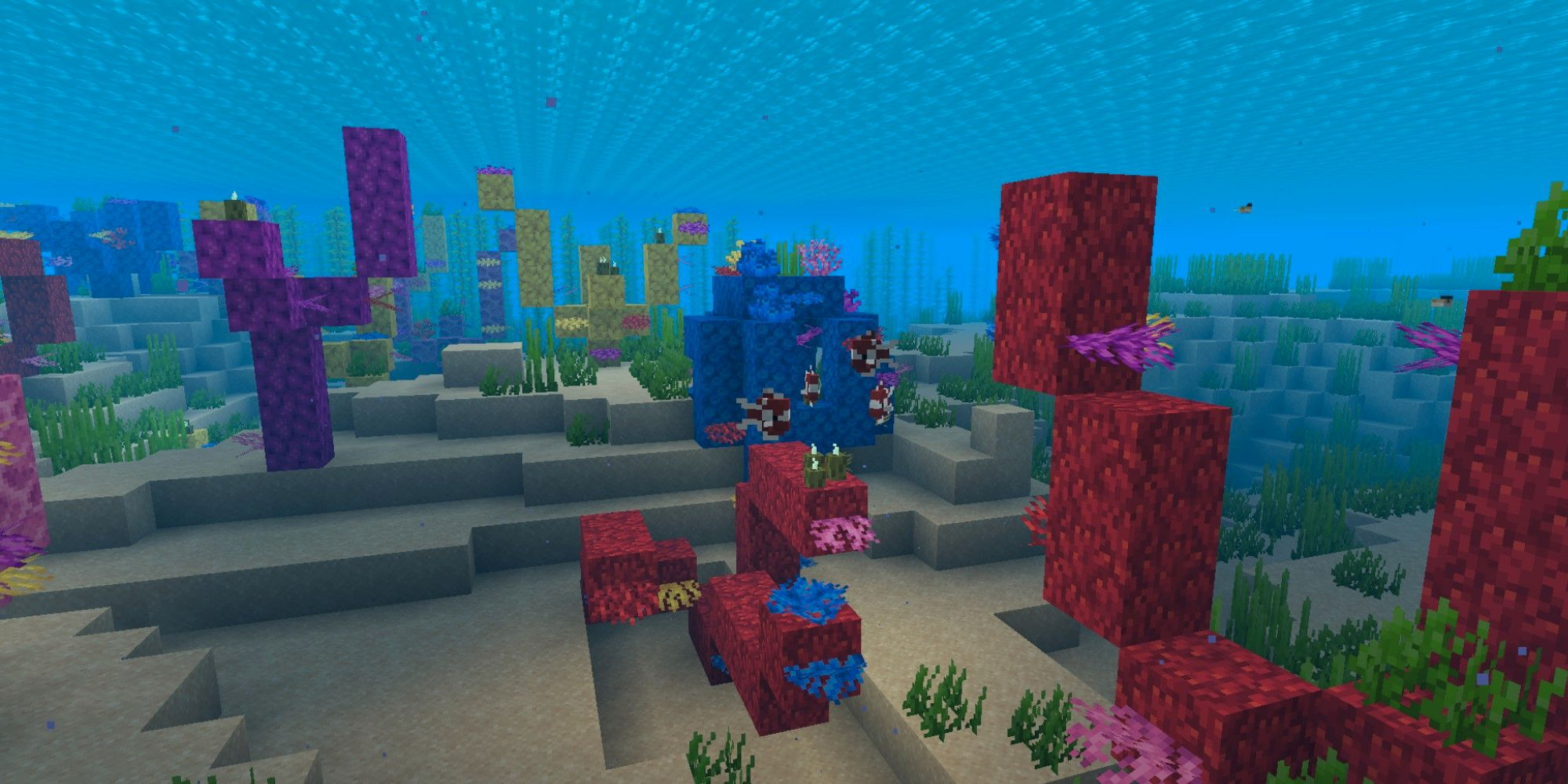 Minecraft: todo lo que necesitas saber sobre los arrecifes de coral