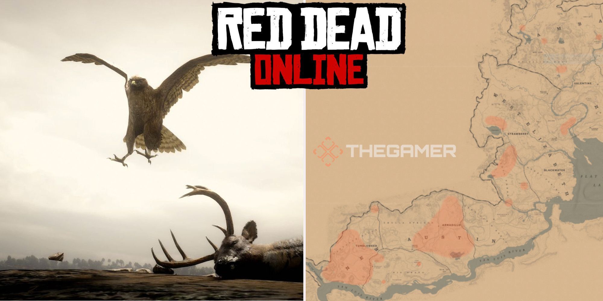 Red Dead Online: las mejores ubicaciones de Hawk