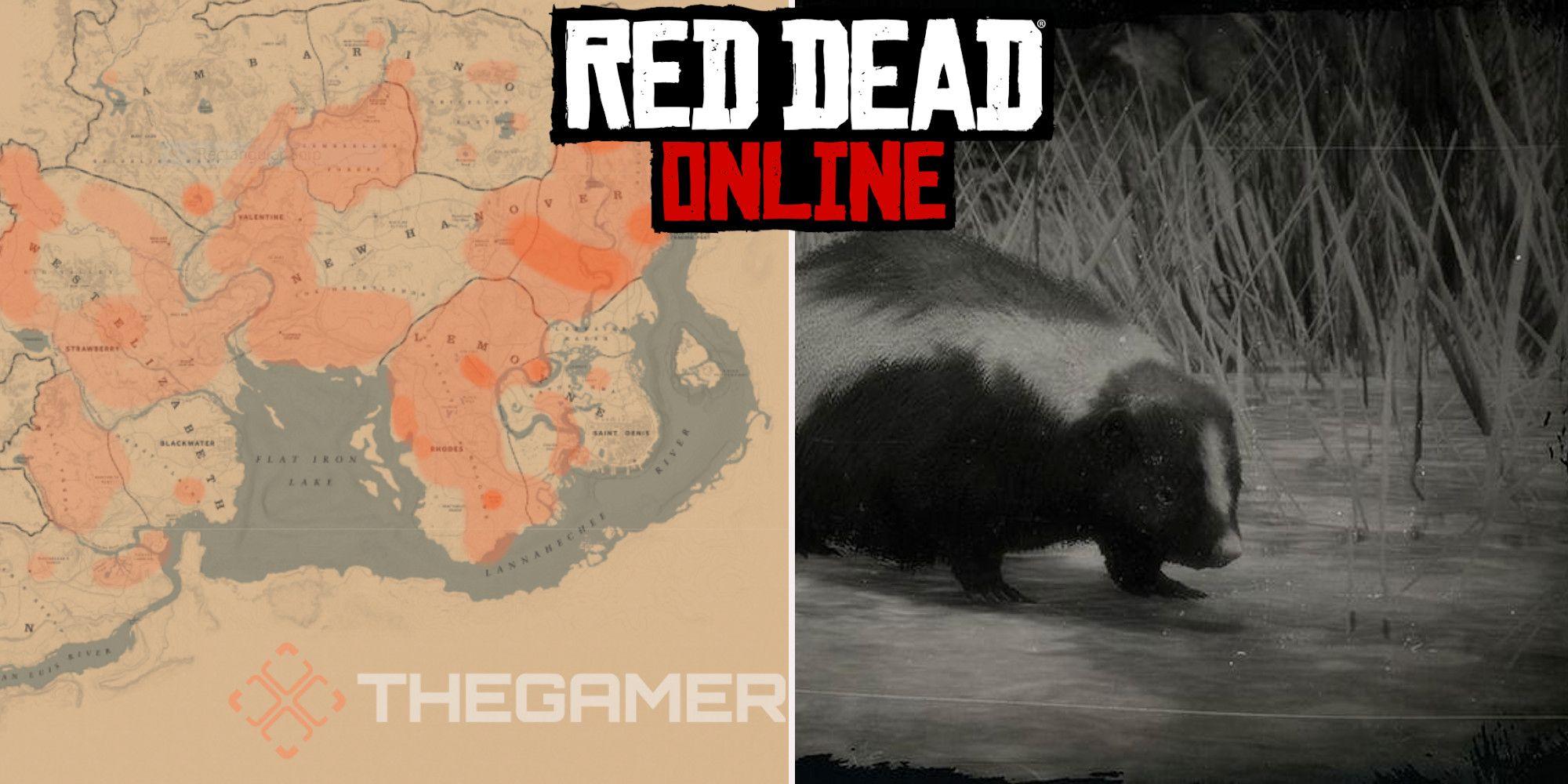 Red Dead Online: las mejores ubicaciones de caza de zorrillos rayados