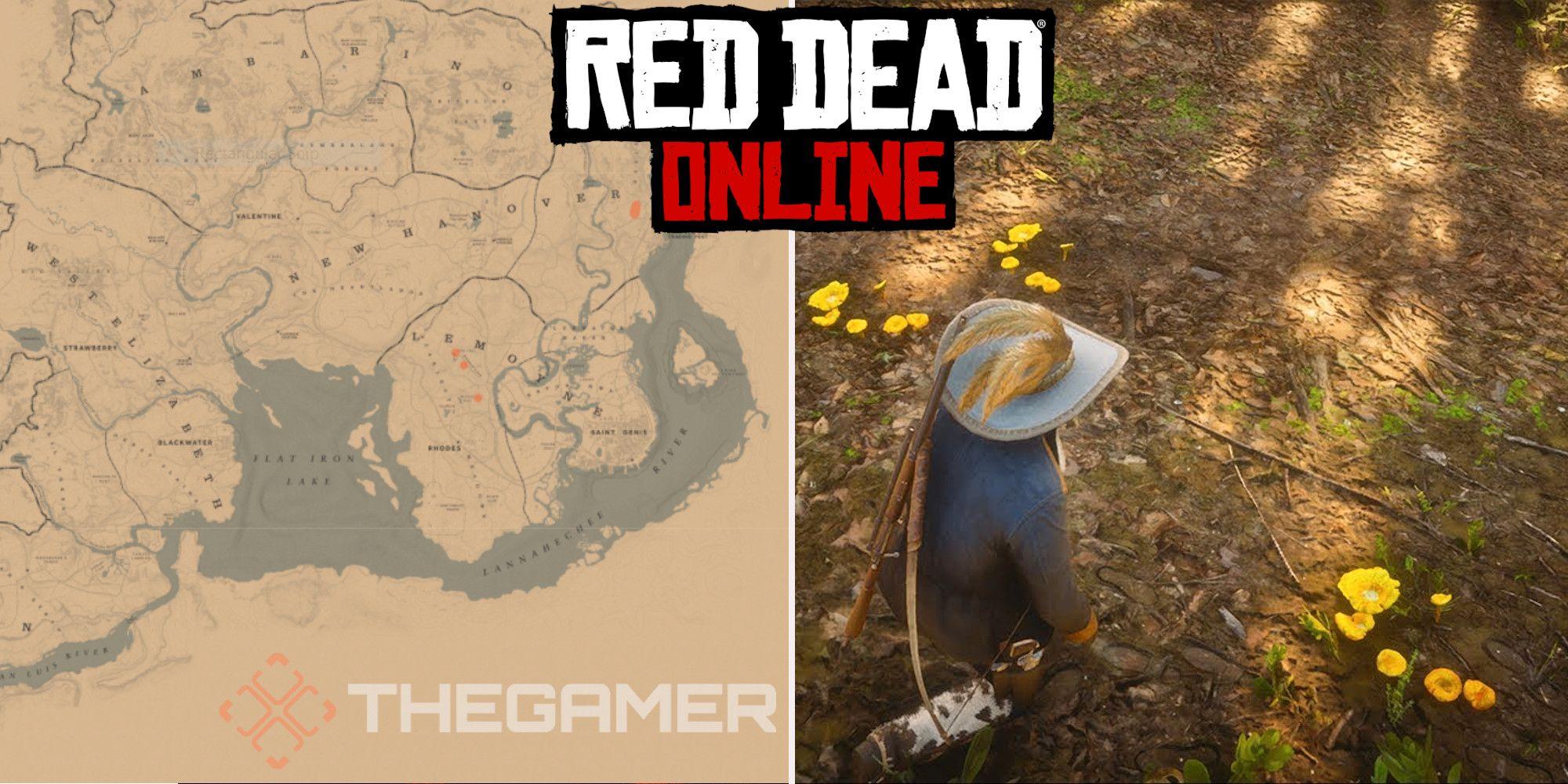 Red Dead Online: las mejores ubicaciones para recolectar hongos rebozuelos